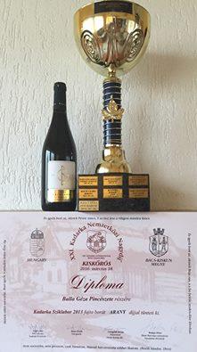 Champion: Cadarca Stonewine 2013